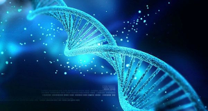 Con người chỉ sử dụng hết 8,2% ADN