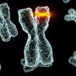 Thích ứng gen hay khả năng miễn nhiễm bệnh di truyền