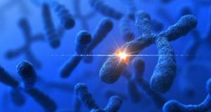Đột biến gen là gì? Phần-3