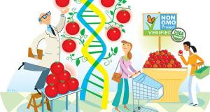 GMO: Thực phẩm biến đổi gen – Phần 1