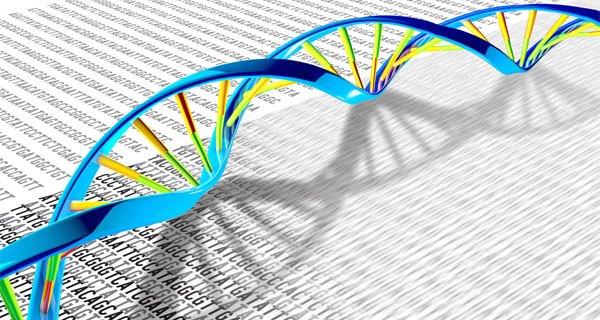 Một hướng tiếp cận mới về mối liên kết giữa đột biến và bệnh di truyền