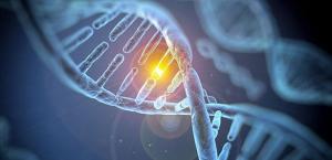 Đột biến gen là gì? Phần-2
