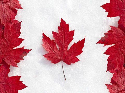 di dân Canada